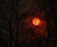 Sun as seen through smoke. Aspen Park forest fire near Denver 03.26.12
