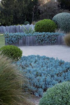Rain and snow are going to play a huge part in your yard landscaping decisions. For example you will have to plan for your yard landscaping with care. Front Yard Landscaping, Backyard Landscaping, Landscaping Ideas, Patio Ideas, Coastal Landscaping, Luxury Landscaping, Back Gardens, Outdoor Gardens, Amazing Gardens