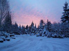 Lovely Desktop Wallpaper Winter Nature