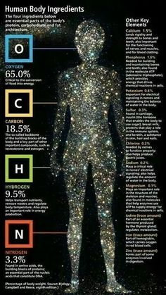 Human body made up of these elements
