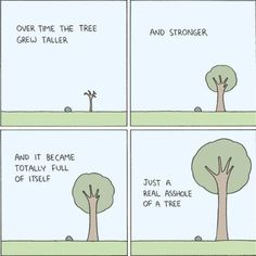 So The Tree Grew And Grew...
