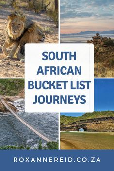 What are the best South African holiday destinations, the bucketlist of best places to visit in South Africa? Here are 20 from Kgalagadi Transfrontier Park, Augrabies Falls and Namaqualand to the Cape West Coast, Cape Town, the Cape Winelands and the Cape Whale Coast. Find out why to visit Garden Route, The Wild Coast, Addo Elephant National Park, the Karoo, Drakensberg, Durban and the KwaZulu-Natal Coast, iSimangaliso Wetland Park, Cradle of Humankind, Panorama Route and Kruger National… Augrabies Falls, South African Holidays, Wetland Park, Whitewater Rafting, Africa Travel, Holiday Destinations, World Heritage Sites, Outdoor Travel, Cool Places To Visit