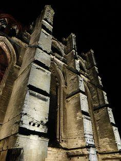 Les ruines de l'abbaye de Saint-Bertin, Saint-Omer | Nord-Pas-de-Calais