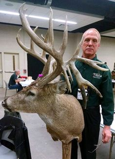 Trophy buck was found dispatched in a Kentucky ditch, wonderful and rare find