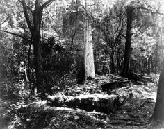 View of stone tower from sugar mill at the Yulee Mill Ruins Historic State Park - Homosassa, Florida 1946