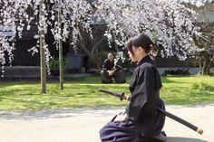 Japanese Samurai Girl...
