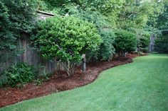 Cheapest Landscaping for Long Narrow Backyards | Our backyard is long and narrow ...