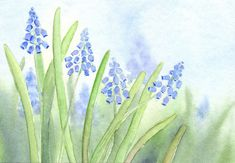 Aquarell Original klein, Blumen, Traubenhyazinthen, 11x16 | eBay