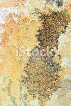 Manganese dendrites on limestone Solnhofen Royalty Free Stock Photo