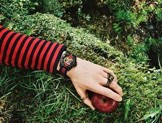 GUCCI Gift Giving 2016 Campaign