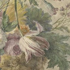 Bloemen in een vaas, anonymous, 1700 - 1800 - Jan van Huysum-Collected Works of Karol de Witt - All Rijksstudio's - Rijksstudio - Rijksmuseum