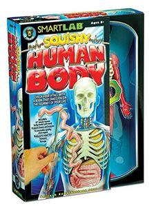SmartLab Toys Squishy Human Body SmartLab Toys http://www.amazon.com/dp/1932855785/ref=cm_sw_r_pi_dp_Urb7tb1JJ6PMY
