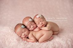 """LearnShootInspire.com """"one a day"""" by Traci Shupert Photography on Facebook! #triplets #newborn #photography"""
