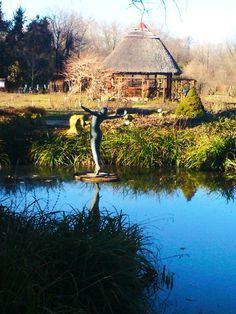 Füvészkert in Szeged, Csongrád megye Mountains, Nature, Travel, Naturaleza, Viajes, Destinations, Traveling, Trips, Nature Illustration