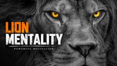 LION MENTALITY - Powerful Motivational Speech (Featuring Ray Lewis, Coac... Motivational Speeches, Motivational Videos, Best Motivational Speakers, Ray Lewis, Achieve Your Goals, Dreaming Of You, Pep Talks