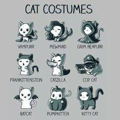 Costume Chat, Cat Costumes, Costume Ideas, Halloween Costumes, Niedlicher Panda, Cartoon Mignon, Funny Animals, Cute Animals, Cute Animal Quotes