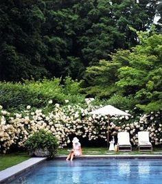 poolside with hydrangeas and lush greenery