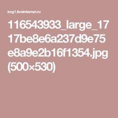 116543933_large_1717be8e6a237d9e75e8a9e2b16f1354.jpg (500×530)