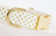 Gold Polka Dot Dog Collar - A lovely collar for a summer wedding | Pecan Pie Puppies