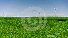 Wind turbines standing in a crop field landscape. Copy space on green field. Crop Field, Green Fields, Clear Sky, Wind Turbine, Landscapes, Royalty, Space, Spring, Landscaping