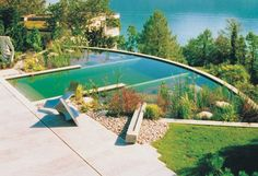 modern natural pool...no more chemicals and scrubbing the bottom of the pool for that perfect clear blue.  Too cool.