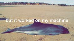 """[text: """"but it worked on my machine"""", photograph of Dolphin failing to run in an environment it hasn't been compiled for] [HD Version] [Store] Dream Code, Working On Myself, Environment, Coding, Programming, Funny, Movie Posters, Photograph, Store"""