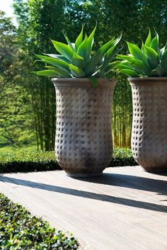 Garden in Byron Bay, Australia by Secret gardens of Australia