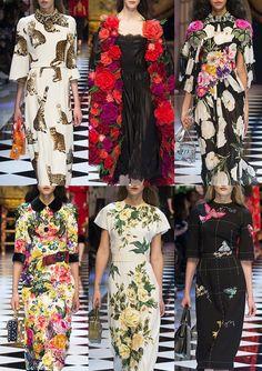 Dolce&Gabbana_AW1617_Milan - Romantic Florals – Tack lines – Floral Relief & Embellishment – Cat Conversational – Animal Prints – Underwear Lace – Military Details