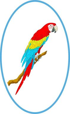 Window Art in Vinyl Etchings: Tropical Red, Yellow & Blue Macaw Parrot Bird on Branch - Etched Vinyl Stained Glass Film, Static Cling Window Decal, Tropical Birds Window Art, Window Decals, Etched Glass Vinyl, Blue Macaw, Bird On Branch, Static Cling, Parrot Bird, Tropical Birds, Bunt