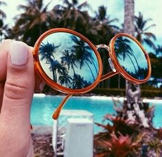round sunnies x palms |