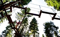 Treetop Adventure Park at Granlibakken Tahoe City