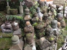 写真集 - Jimdo 独自レイアウトのホームページ作成ならgariken design Stepping Stones, Outdoor Decor, Home Decor, Stair Risers, Decoration Home, Room Decor, Home Interior Design, Home Decoration, Interior Design