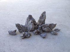 KS07 11.7lbs - Seiryu Stone - ADA rock aquarium Moss plant shrimp Anubias Crypt