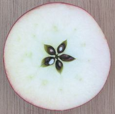 Semillas de manzano