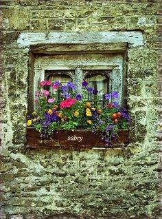 English Window Box 2019 make a hypertufa brick wall with a windo and door in it The post English Window Box 2019 appeared first on Flowers Decor. Window Box Flowers, Window Boxes, Old Windows, Windows And Doors, Pot Jardin, Garden Windows, Cottage Windows, Window View, Through The Window