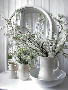 Voorjaar - bloesem takken