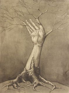 http://th00.deviantart.net/fs39/PRE/i/2010/198/5/a/Tree_Limb__by_Malignanttoast.jpg