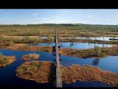 Piltid Eesti loodusest - Musical slide-show of Estonian nature (9 minutes)