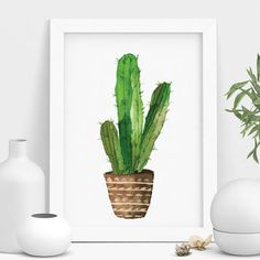Are you interested in our cactus plant? With our cactus pot you need look no further.