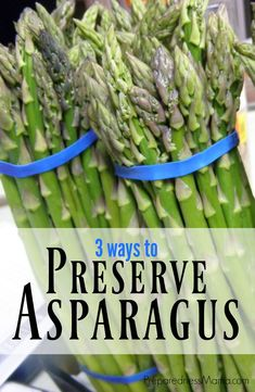 There are several ways to preserve your asparagus for the long and dreary winter months. You'll be glad you learned 3 ways to preserve asparagus while you can get it fresh. Canning Asparagus, Freezing Asparagus, Pickled Asparagus, Freezing Vegetables, Asparagus Spears, Fresh Asparagus, Asparagus Recipe, Veggies, How To Freeze Asparagus