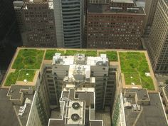 Chicago City Hall Green Roof. photo by TonyTheTiger, wikipedia #Green_Roof #Chicago_City_Hall_Green_Roof #TonyTheTiger