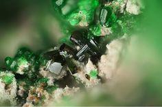 Vergasovaite, Cu3O[(Mo,S)O4][SO4], Euchlorine, Yadovitaya fumarole, Second scoria cone, Northern Breakthrough, Great Fissure eruption, Tolbachik volcano, Kamchatka Oblast', Far-Eastern Region, Russia. Brown prisms of Vergasovaite on green Euchlorine. Fov 1.2 mm. Copyright © Stephan Wolfsried 5/2016