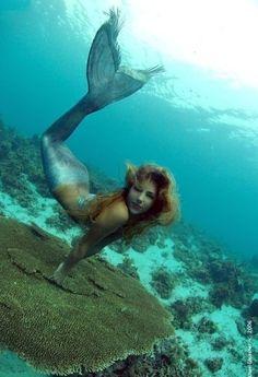 calling all mermaids