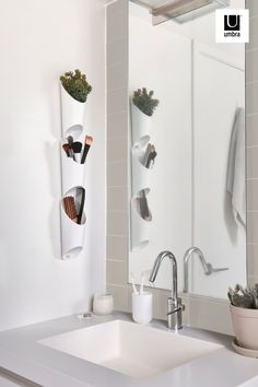 $20 · Floralink is a set of three wall vessels that link together and hold indoors plants like succulents. Combine and link multiple sets together to create a live garden on your wall. These pretty molded vessels have a shape inspired by organ pipes and can be used to hold items aside from plants, making them a compact open storage item, great for small spaces. Easy to mount, these vessels include all hanging hardware and each set of three only requires one hole in the wall to be hung up. Plant Wall Decor, Indoor Plants Low Light, Rental Space, Diy Bed Frame, Easy Home Decor, Modern Wall, Small Spaces, Living Spaces, Modern Design