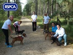 Our corporate volunteers taking a quick break from all the dog walking
