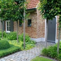 Landelijk tuin Hoeven_Tuinmeesters © While historical around thought, the particular pergola continues to be having Garden Paths, Garden Landscaping, Garden Tools, Small Gardens, Back Gardens, Small Garden Design, Exterior, Paving Stones, Garden Planning