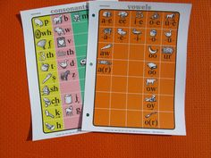 Set of 2 Phonovisual Charts Consonants and Vowels Phonics Charts New Homeschool