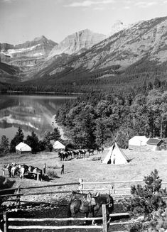 """In Glacier's early days, tent camps run by the Great Northern Railway provided food and lodging to visitors traveling on horseback throughout the park. These tent camps would often be located near planned backcountry chalet sites, but the Railway also set up four """"permanent"""" camps in scenic areas of the park. This photo taken in the 1930s shows the tent camp at Cosley Lake (then known as Crossley Lake) in Glacier's Belly River region. California Beach Camping, Glacier National Park Montana, Tent Camping, Lodges, Camps, National Parks, Traveling, 1930s, River"""