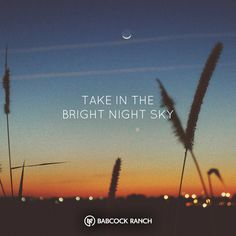 At Babcock Ranch, we're all about nature. One of the most beautiful sights we have in Florida is our sunset and night sky. Take it all in at Babcock Ranch.