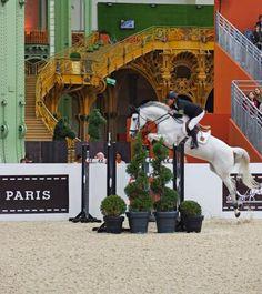 Au Grand Palais Saut Hermès, Paris, France